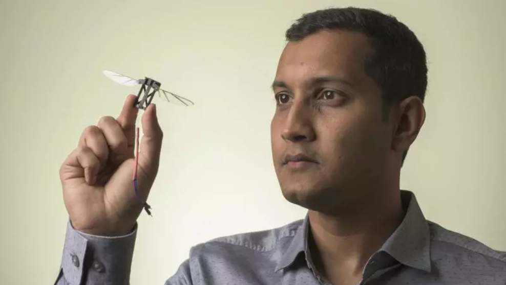Bee agility could inspire drones entering through cramped spaces
